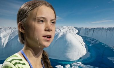 Greta Thunberg in Antarctic collage
