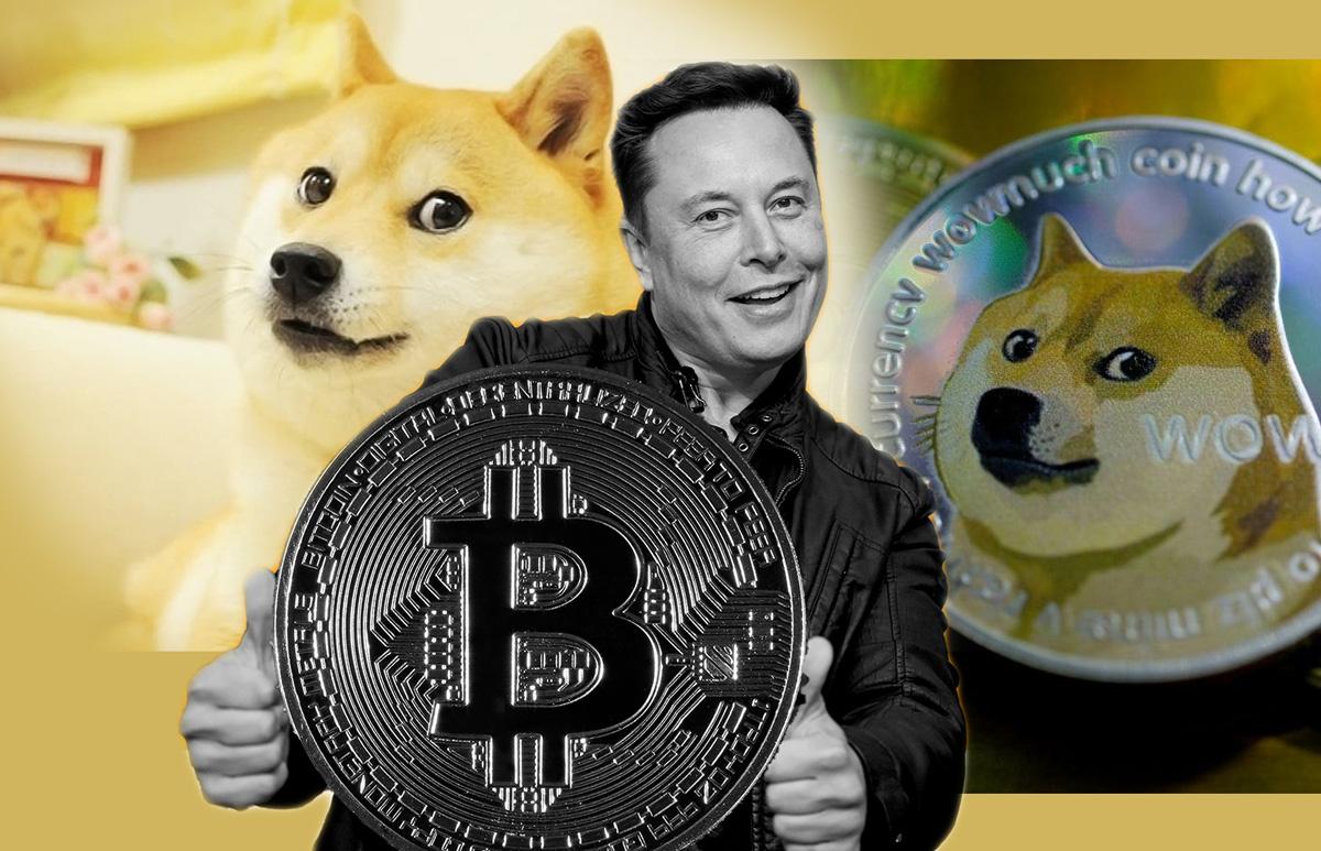 Elon Musk, Bitcoin, Tesla, SpaceX: Twitter Explosion Erupts