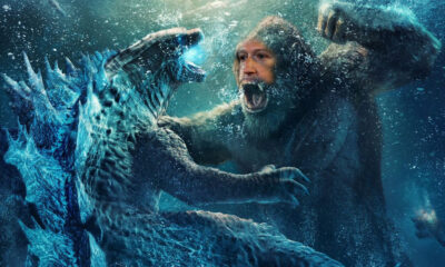 Godzilla vs Kong Zuckerberg Lynxotic